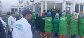 وقفة  احتجاجية لعمال وعاملا ت شركة سيكوبا